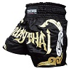 FIGHTERS - Muay Thai Shorts / Schwarz-Gold / Medium